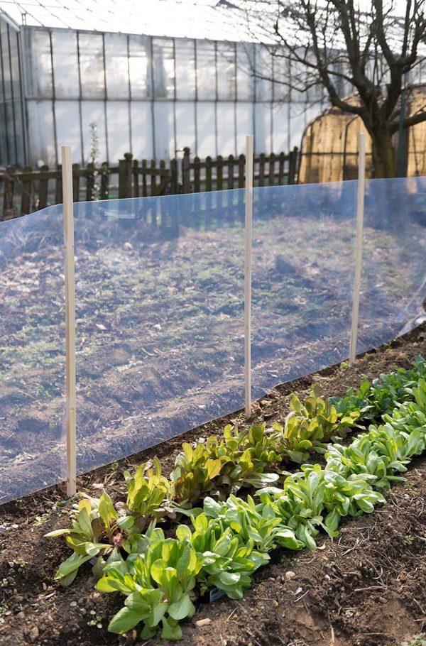 Mehke prozorne pvc folije Polikristal za vrt in rastlinjake