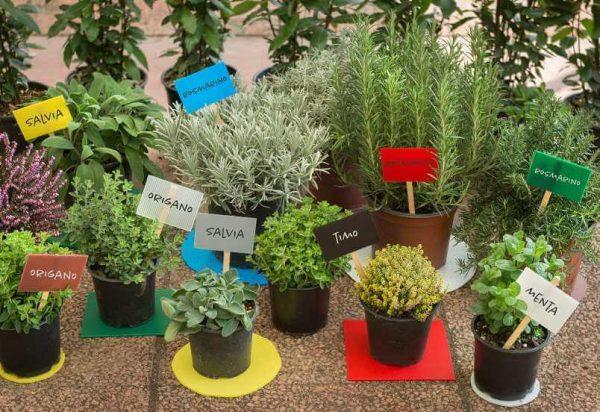 Prekatne polipropilenske plosce Plastonda za oznacevanje vrtnarjenje